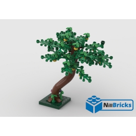 NOTICE DE MONTAGE NILLBRICKS LEGO CITRONNIER : NM00335